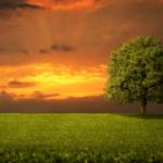 מדיטציה כדו שיח עם עולם הרוח