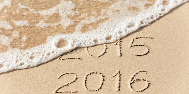 אז מה היה לנו? סיכום שנת 2015 בחינוך ולדורף בישראל [איגרת 183]