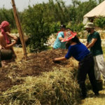 זריעות סתיו- לירון ישראלי, חקלאי ביודינמי