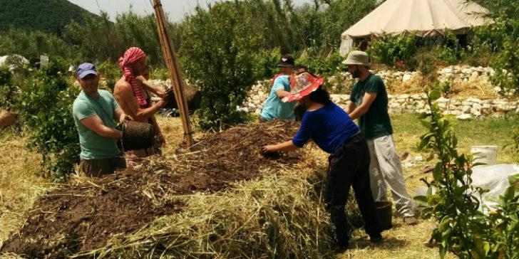 להחזיר את החיים והאיזון לאדמה: שיחה עם חקלאי ביודינמי [איגרת 276]