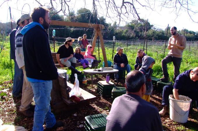 מפגש למידה על חקלאות ביודינמית. צילום: נלי גלוזמן