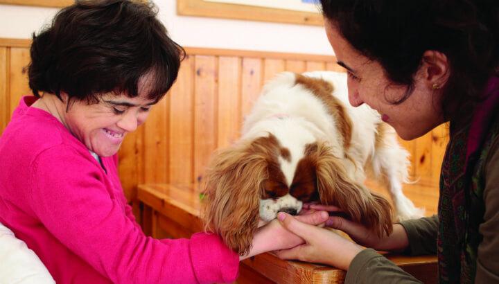 גרן גילה בטיפול בבעלי חיים. צילום: גל לוי
