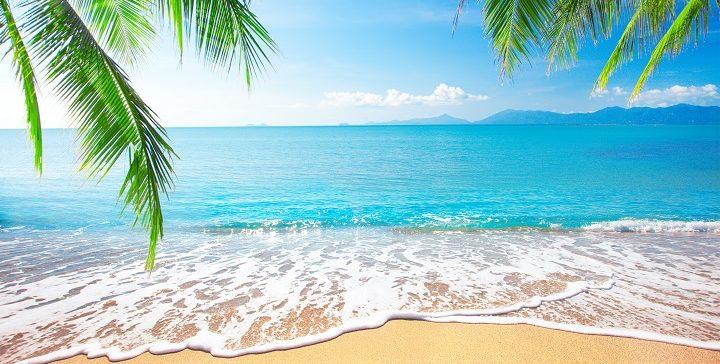 בין הים והשלגון: לצמוח ולגדול בחופש הגדול