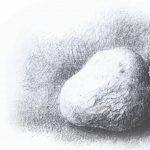 תפוח אדמה. איור: אקסל אוולד