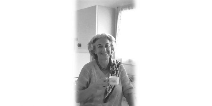 חוה לוי, מווינה לירושלים – <br/>תולדות חיים, בקיצור