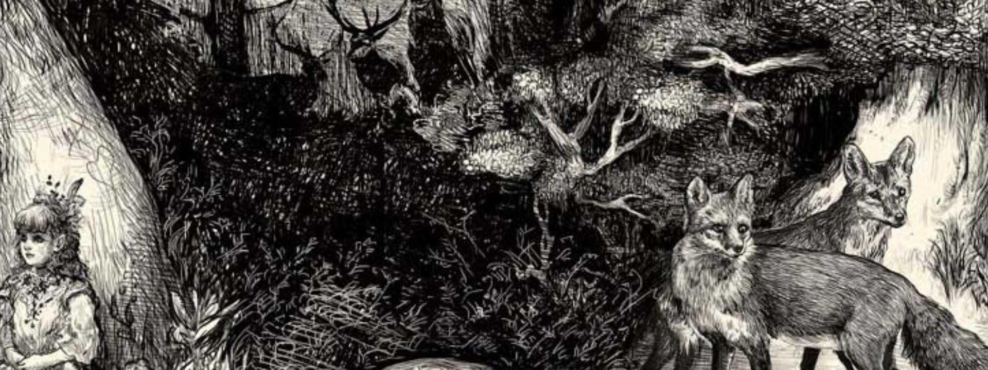 ארבעה נכנסו לפרדס: היער כמרחב חניכה